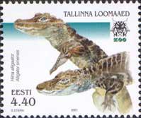Таллиннский зоопарк, Крокодил, 1м; 4.40 Кр