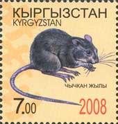 Год Крысы, 1м; 7.0 C