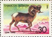 Фауна, Архар, 1м; 0.30 руб