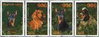 Фауна, Собаки, 3м и купон в сцепке; 900 руб х 3