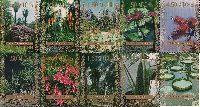 Сухумский ботанический сад, 10м; 1.50 руб х 8, 4.50, 5.00 руб