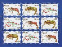 Фауна моря, 1 выпуск, Креветки, голубой фон, М/Л из 3 серий