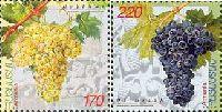 Виноград, 2м; 170, 220 Драм