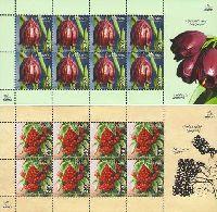 Флора Армении, 2 М/Л из 8 серий