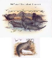 Фауна. Тюлени, блок + М/Л из 6м; 250 М x 6, 500 М