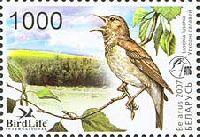 Фауна, Восточный соловей, 1м; 1000 руб