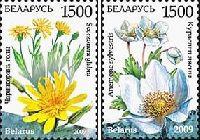 Флора, Цветы; 2м; 1500 руб х 2