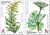 """Инвазивные растения, 2м; """"А"""", """"N"""""""
