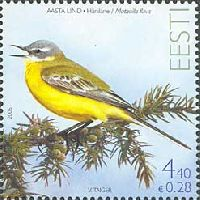 Фауна, Желтая трясогузка, 1м; 4.40 Кр