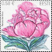 Флора, Пионы, 1м; 0.58 Евро