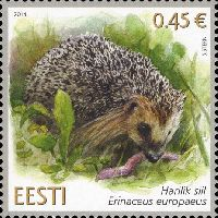 Фауна, Еж, 1м; 0.45 Евро