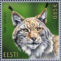 Фауна, Рысь, 1м; 0.65 Евро