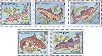 Фауна, Рыбы, 5м; 10, 20, 30, 50, 80т