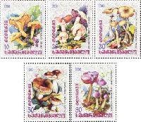 Флора, Грибы, 5м; 10, 20, 30, 50, 80т