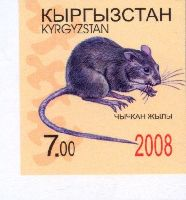 Год Крысы, 1м беззубцовая; 7.0 C
