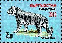 Год Тигра, 1м; 25 C