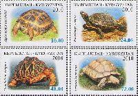 Фауна, Черепахи, 4м; 16, 24, 48, 72 C