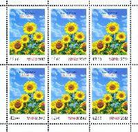 Флора, Подсолнух, М/Л из 6м; 42.0 C х 6