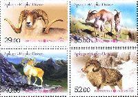 Фауна, Памирский архар, 4м; 29, 35, 40, 52 С