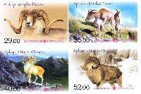 Фауна, Памирский архар, 4м беззубцовые; 29, 35, 40, 52 С