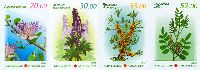 Лекарственные растения, 4м беззубцовые; 20, 30, 35, 52 С
