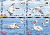 WWF, Пеликаны, 4м в квартблоке; 22, 31, 39, 117 С