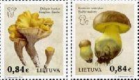 Флора, Грибы, 2м; 0.84 Евро x 2