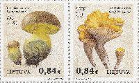 Флора, Грибы, 2м в сцепке; 0.84 Евро x 2