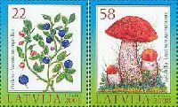 Флора, Ягоды, Грибы, 2м; 22, 58c
