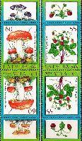 Флора, Ягоды, Грибы, тет-беш, 4м; 55, 60c x 2