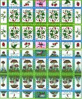 Флора, Ягоды, Грибы, 2 М/Л из 10 серий