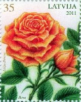 Флора, Розы, 1м; 35c