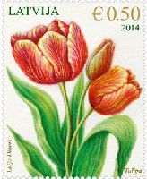 Флора, Тюльпаны, 1м; 0.50 Евро