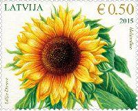 Флора, Подсолнух, 1м; 0.50 Евро