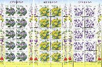 Флора, Полевые цветы, 3 М/Л из 10 серий