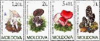 Флора, Грибы, 4м; 1.20, 2.0, 5.40, 7.0 Лей