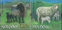 Фауна, Овцы, 2м; 1.20, 5.75 Лей