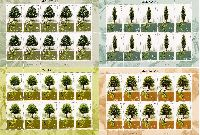 Флора, Деревья, 4 М/Л из 10 серий