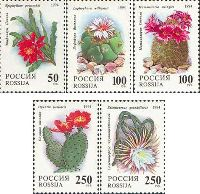 Флора, Кактусы, 5м; 50, 100, 100, 250, 250 руб