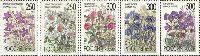 Флора, Цветы, 5м; 250, 250, 300, 300, 500 руб