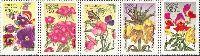 Флора, Цветы, 5м; 500, 750, 750, 1000, 1000 руб