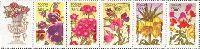 Флора, Цветы, 5м + купон в сцепке; 500, 750, 750, 1000, 1000 руб