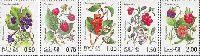 Флора, Ягоды, 5м; 0.5, 0.75. 1.0, 1.5, 2.0 руб