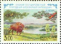 ЕВРОПА'99, 1м; 5.0 руб