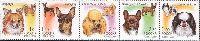 Фауна, Декоративные собаки, 5м в сцепке; 1.0, 1.50, 2.0, 2.50, 3.0 руб