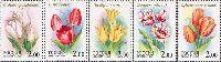 Флора, Тюльпаны, 5м; 2.0 руб х 5