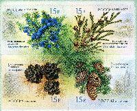 Флора России, Шишки, самоклейки, 4м в квартблоке; 15.0 руб х 4