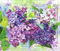 Flora of Russia, Lilac, selfadhesives, block of 4v; 30.0 R х 4