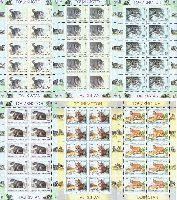 WWF, Дикие кошки, 6 М/Л из 10 серий