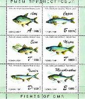 """Фауна, Рыбы, блок из 6м; """"А"""", """"Б"""", """"Г"""", """"Г"""", """"Д"""", """"E"""""""